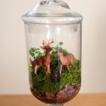 DIY Wedding: Terrarium Centerpiece for a Woods Themed Wedding