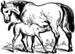 horse-nursing